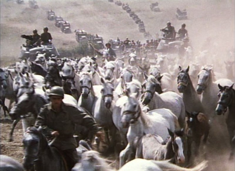 miracle-of-the-white-stallions-1963