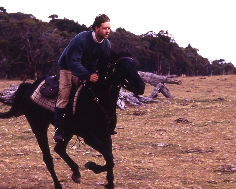 the-silver-stallion-king-of-the-wild-brumbies