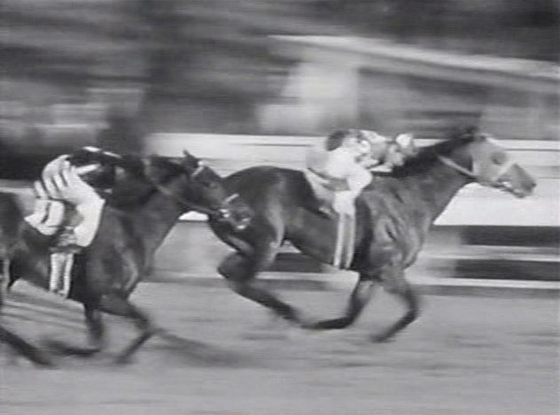 the-story-of-seabiscuit-1949