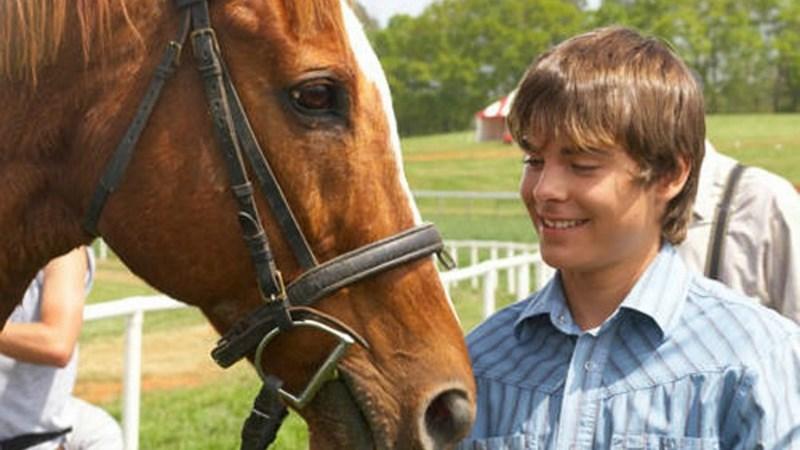 derby-stallion